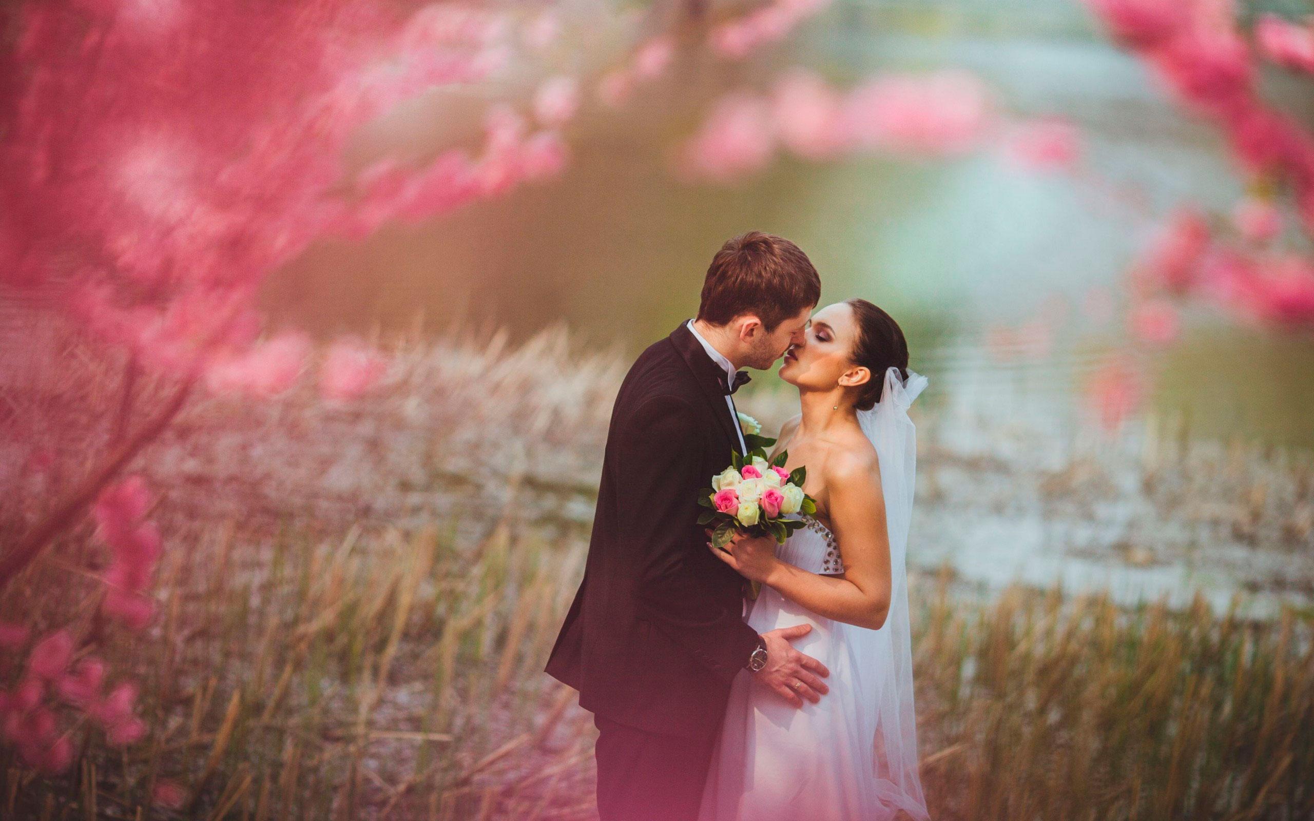 Свадьба и все о ней в 2010г